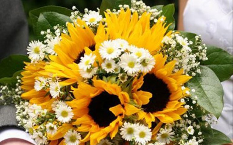 girasole_bouquet_margherite
